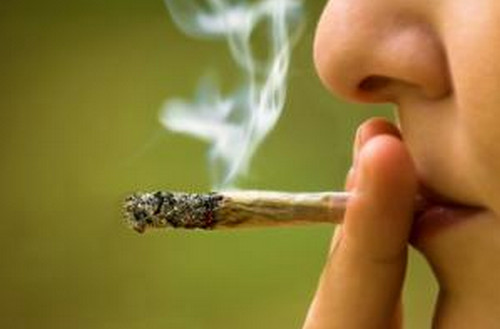 Smoking cannabis is one of the commonly used methods in introducing weed to the body photo